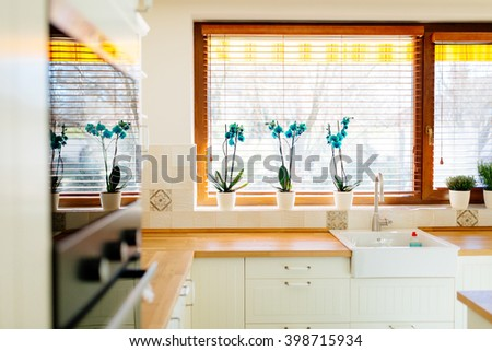 Built-in kitchen appliances  in a contemporary interior - stock photo