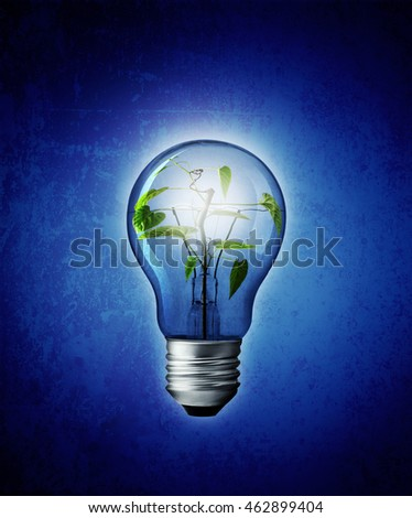 Bulb light with tree inside on blue background