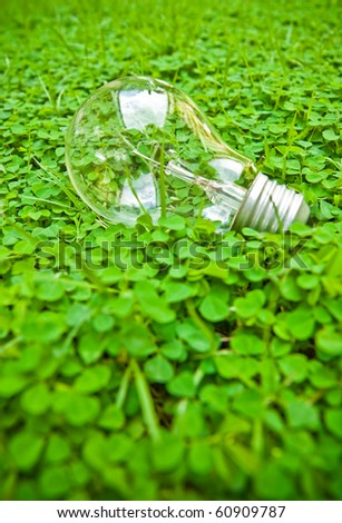 bulb on green - stock photo