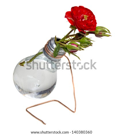 Bulb vase with roses isolated over white background - stock photo