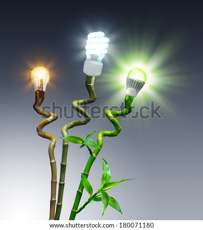 bulbs in comparison - Halogen, Fluorescent and LED - on bamboo  - stock photo
