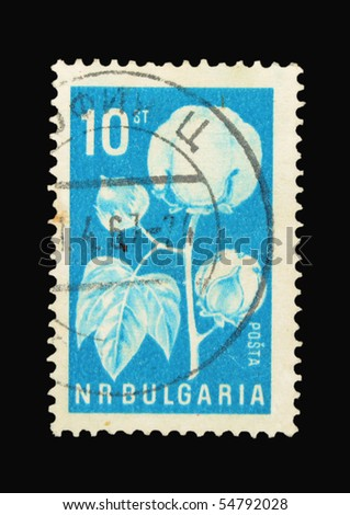 BULGARIA - CIRCA 1967: A stamp printed in Bulgaria showing flower, circa 1967
