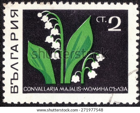 "Bulgaria - CIRCA 1983: a stamp printed in Bulgaria shows a series of images ""spring flowers"", circa 1983  - stock photo"