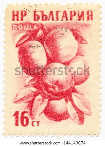 BULGARIA - CIRCA 1955: A stamp printed in Bulgaria shows apple (Malus sylvestris), circa 1955 - stock photo