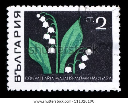 BULGARIA - CIRCA 1969: A stamp printed in Bulgaria shows lily series, circa 1969