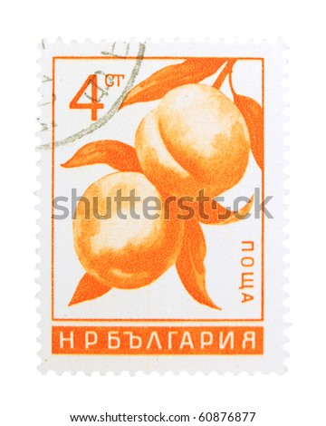 BULGARIA - CIRCA 1960s: A stamp printed in Bulgaria showing a branch with ripe peaches, circa 1960s
