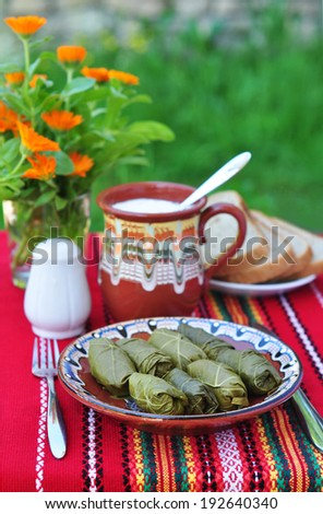 Bulgarian dolmades - Stuffed grape leaves - stock photo