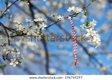 Bulgarian traditional custom spring sign Martenitsa on blosson tree branch against blue sky