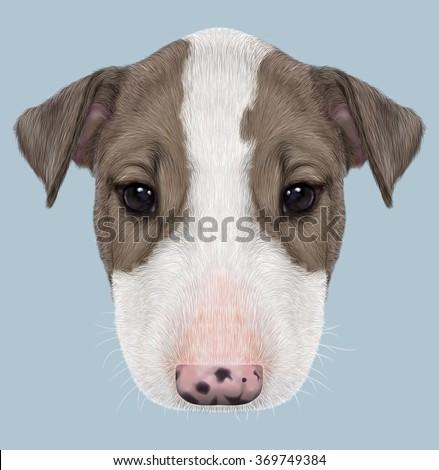 Bull Terrier Dog Portrait.  Illustrated Portrait of  Bull Terrier Puppy on blue background. - stock photo