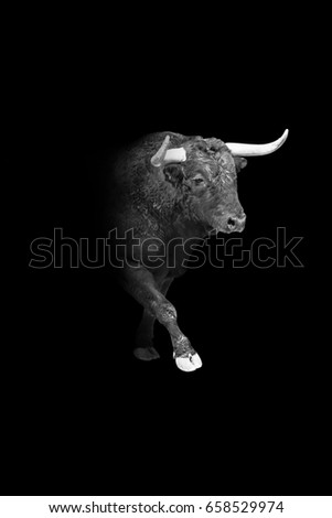 Wall Street Bull Stock Images RoyaltyFree Images Vectors
