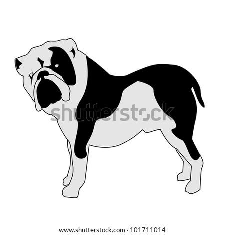 Bulldog abstract silhouette - vector version in portfolio - stock photo