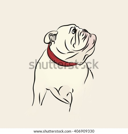 Vector Image English Bulldog Dog Vector Stock Vector
