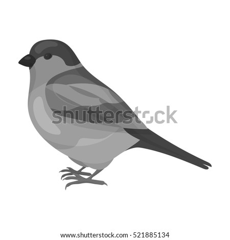 Bullfinch icon in monochrome style isolated on white background. Bird symbol stock bitmap illustration.