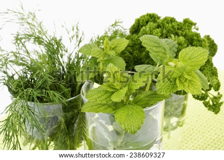 Bunces of parsley, dill and lemon balm