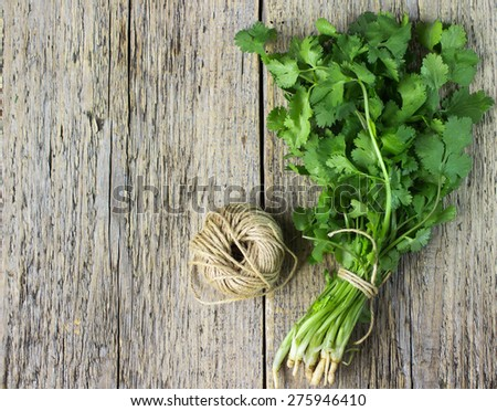 Bunch fresh cilantro  on a wooden table - stock photo