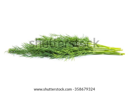 bunch fresh dill herb isolated on white background - stock photo