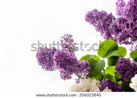 Bunch lilac flowers in vase on table - stock photo