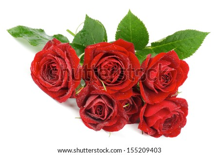 Bunch of Beauty Perfect Red Roses with Water Droplets and Leafs isolated on white background