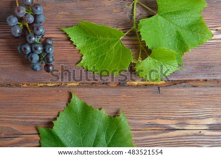 bunch of black grapes and leaves on wooden background
