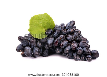 Bunch of black grapes with fresh leaves on white background
