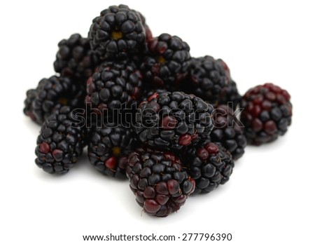 bunch of blackberries isolated on white  - stock photo
