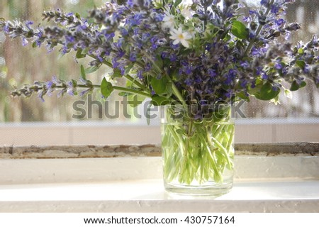 bunch of blue sage flowers in vase