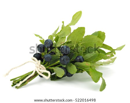 Bunch of Blueberry isolated on a white background