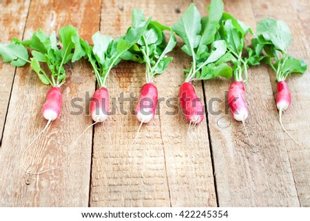 Bunch of bright fresh organic radishes with leaves on rustic wooden table, with copyspace - stock photo