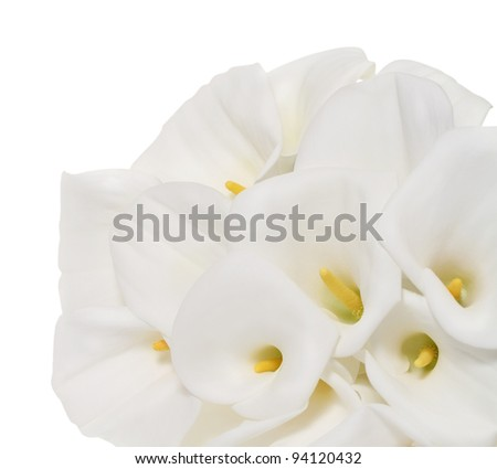 Bunch of Cala Lilies in high key. Isolated on white - stock photo