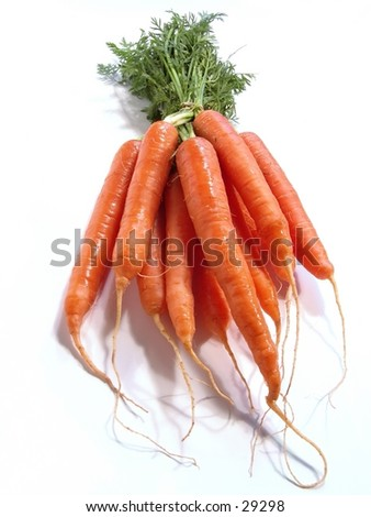 Bunch of Carrots on white