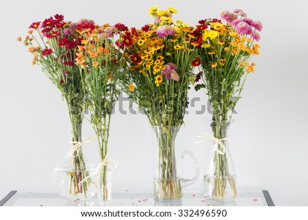 Bunch of colorful chrysanthemum and daisy flowers in different shape transparent glass vases over light grey background - stock photo