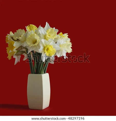 Bunch of Daffodils - stock photo