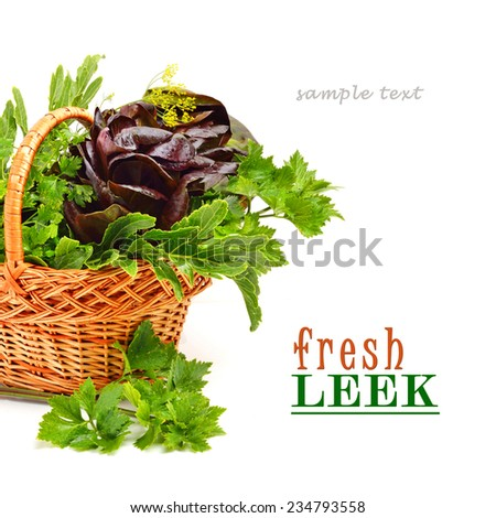 Bunch of different red and green curly lettuce, water-cress, spinach with parsley - stock photo