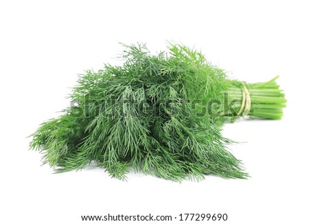 Bunch of dill. Isolated on a white background.