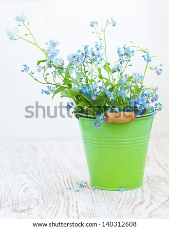 Bunch of forget-me-not  flowers in green bucket