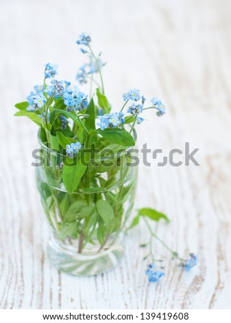 Bunch of forget-me-not flowers in vase