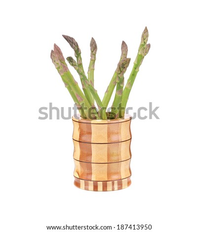 Bunch of fresh asparagus. Isolated on a white background.