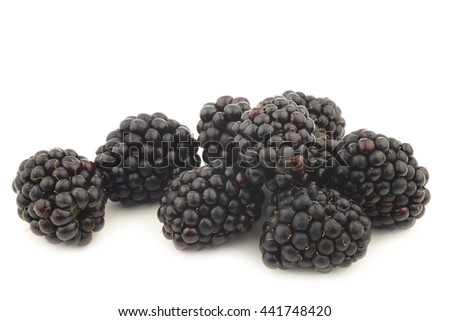 bunch of fresh blackberries on a white background - stock photo