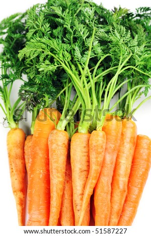 Bunch of fresh carrots with leaves  on white background