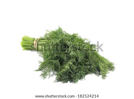 Bunch of fresh dill. Isolated on white background.
