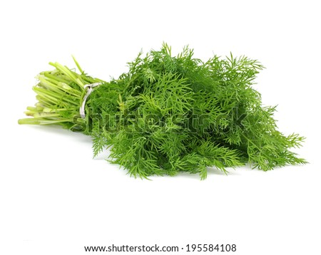 Bunch of fresh dill on a white background
