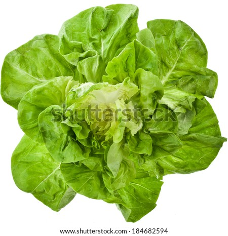 Bunch of Fresh Green Salad Close up Top View Surface Isolated On White Background - stock photo