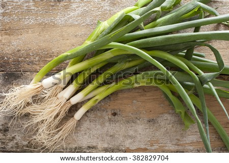 Bunch of fresh green spring onions for a pungent seasoning for salads or cooking lying on a rustic wooden table viewed from above - stock photo