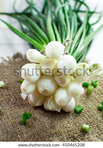 Bunch of fresh herbs on a wooden surface. Onion. - stock photo