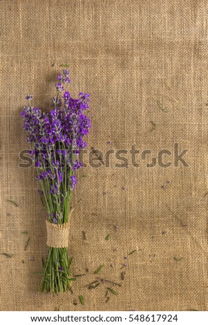Bunch of fresh lavender flowers on matting