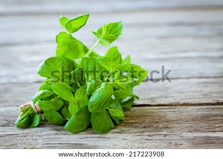 bunch of fresh mint on a wooden background - stock photo