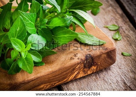 bunch of fresh organic basil in olive cutting board closeup on rustic wooden background - stock photo