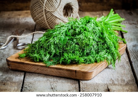 bunch of fresh organic dill on a rustic wooden background - stock photo