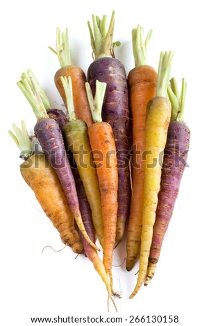 Bunch of fresh organic rainbow carrots  isolated on white - stock photo