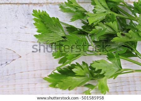 Bunch of Fresh Parsley on White Background. Healthy eating concept